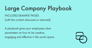 Large Company Playbook
